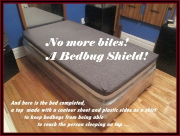 !   The Bedbug Shield